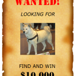 Wanted Poster Templates – 6 Free Templates