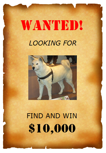 Wanted Poster Templates U2013 6 Free Templates  Printable Wanted Poster Template