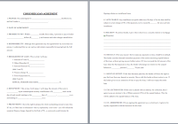 Consumer Loan Agreement Template