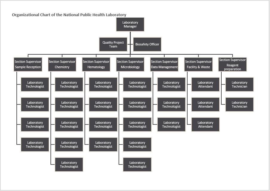 organogram template 03