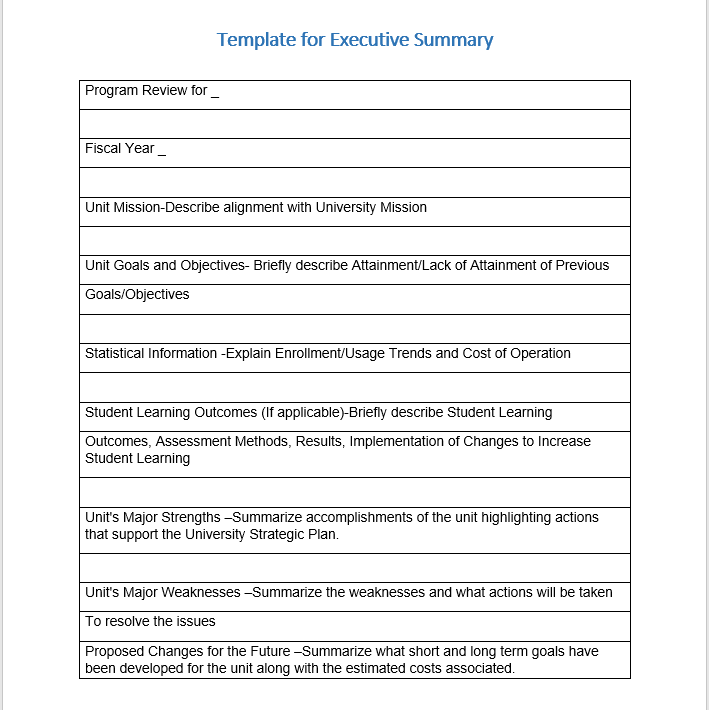 Executive Summary Template 14