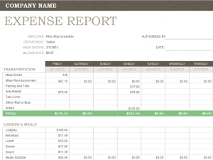 Expenditure Report Template