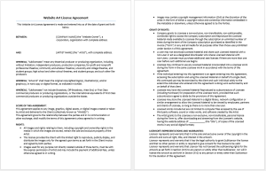 Website Art License Agreement
